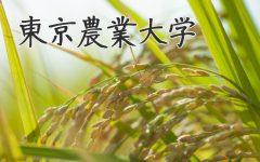 農大イメージ
